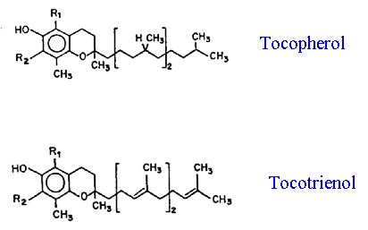 Figure 11 Structure of tocopherols and tocotrienols commonly found in plants.
